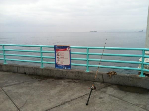 socalfish2